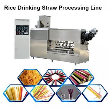 Single Screw Extruder Full Automatic Rice Straw Pasta Straw Making Machine in Korea